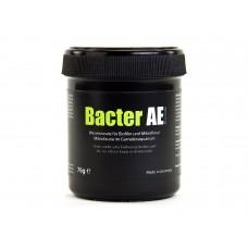 Glasgarten Bacter Ae 76 Gr