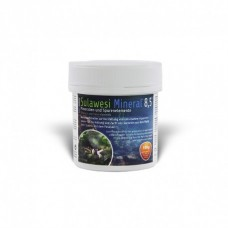 Salty Shrimp Sulawesi Mineral 8.5 100g