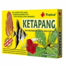 Tropical Ketapang (catappa bag) 6x