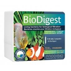 Bio-Digest Bakteri Kültürü 1 ampül