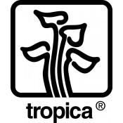 Tropica (93)